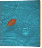 Fall... Wood Print by Mario Celzner