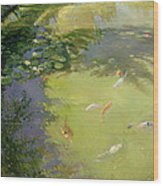 Featherplay Wood Print by Timothy Easton