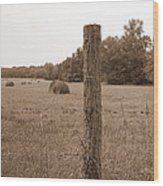 Fence And Field Wood Print by Sheila Harnett