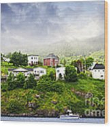 Fishing Village In Newfoundland Wood Print by Elena Elisseeva