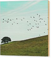 Flock Of Birds Wood Print by Where Photography meets Graphic Design.