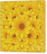 Flower Background Wood Print by Carlos Caetano