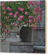 Flowers On The Steps Wood Print by Mary Machare