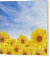 Flowers Over Sky Wood Print by Carlos Caetano