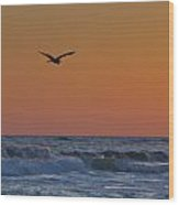 Fly By Wood Print by Charles Warren