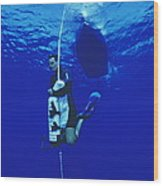 Free-diving Training Wood Print by Alexis Rosenfeld
