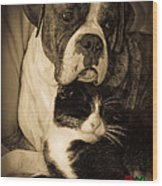 Friendship Is The Greatest Gift Of All Greeting Wood Print by DigiArt Diaries by Vicky B Fuller