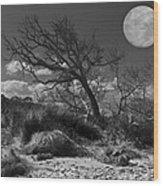 Full Moon Over Jekyll Wood Print by Debra and Dave Vanderlaan