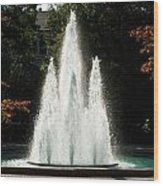Georgia Herty Field Fountain On Uga North Campus Wood Print by Replay Photos