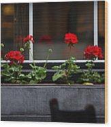 Geranium Flower Box Wood Print by Doug Sturgess