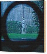 Glimpse Wood Print by Phil Bongiorno