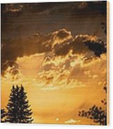 Golden Sky Wood Print by Kevin Bone
