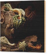 Gourds And Leaves Still Life Wood Print by Tom Mc Nemar