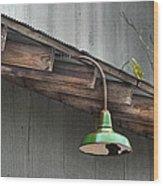 Green Light Wood Print by Brenda Bryant