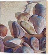 Hallett Cove's Stones - Detail Wood Print by Elena Kolotusha
