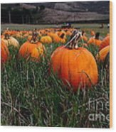 Halloween Pumpkin Patch 7d8405 Wood Print by Wingsdomain Art and Photography