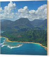 Hanalei Bay 2 Wood Print by Ken Smith
