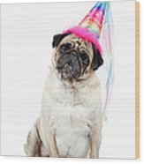Happy Birthday Wood Print by Mlorenzphotography