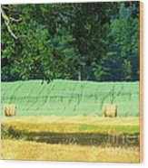 Hay Landscape Wood Print by France Laliberte