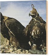 Hooded Eagles Stand Ready For Hunting Wood Print by Ed George