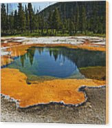 Hot Springs Yellowstone Wood Print by Garry Gay
