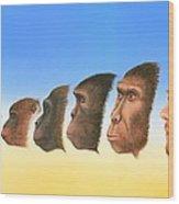 Human Evolution, Artwork Wood Print by Richard Bizley