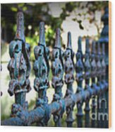 Iron Fence Wood Print by Perry Webster
