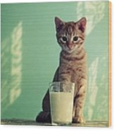 Kitten With Glass Of Milk Wood Print by By Julie Mcinnes