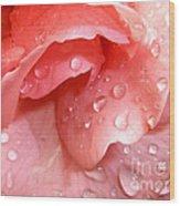 La Vie En Rose Wood Print by Jan Willem Van Swigchem