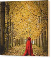 Lady In Red - 5 Wood Print by Okan YILMAZ