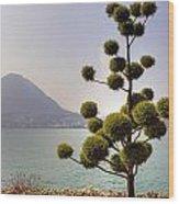 Lake Lugano - Monte Salvatore Wood Print by Joana Kruse