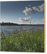 Lake View Wood Print by Gary Eason