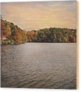 Lakeside Morning Wood Print by Jai Johnson