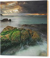 Lands End Wood Print by John Chivers