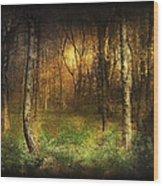 Last Rays Wood Print by Svetlana Sewell