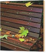 Leafs In Bench Wood Print by Carlos Caetano