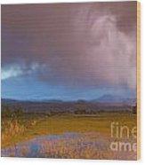 Lightning Striking Longs Peak Foothills 7 Wood Print by James BO  Insogna