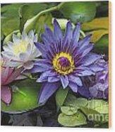 Lilies No. 16 Wood Print by Anne Klar
