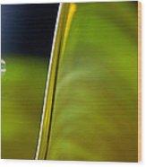 Lime Abstract Wood Print by Dana Kern
