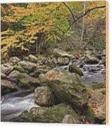 Little River I Wood Print by Charles Warren