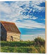 Little Shed On The Prairie Wood Print by Matt Dobson