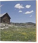 Log Cabin On The High Country Ranch Wood Print by Rich Reid
