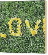Love Spelt Out With Flowers Wood Print by G Fletcher