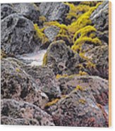 Low Tide Wood Print by Roger Mullenhour