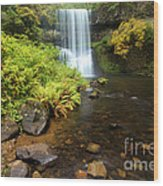 Lower South Falls Wood Print by Adam Jewell
