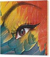 Macaw Wood Print by Yosi Cupano