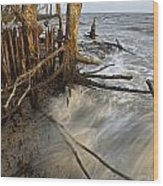 Mangrove Trees Protect The Coast Wood Print by Tim Laman