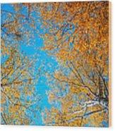 Meet In Heaven. Autumn Glory Wood Print by Jenny Rainbow