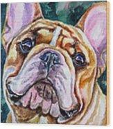 Mesmerizing Eyes Wood Print by Lyn Cook