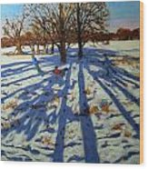 Midwinter Wood Print by Andrew Macara